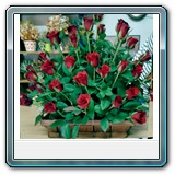 Mic-008 -  Price € 100 75 red roses in a basket